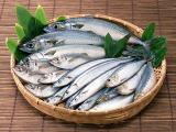 青魚に含まれるDHAやEPAが花粉症に効果的といわれています